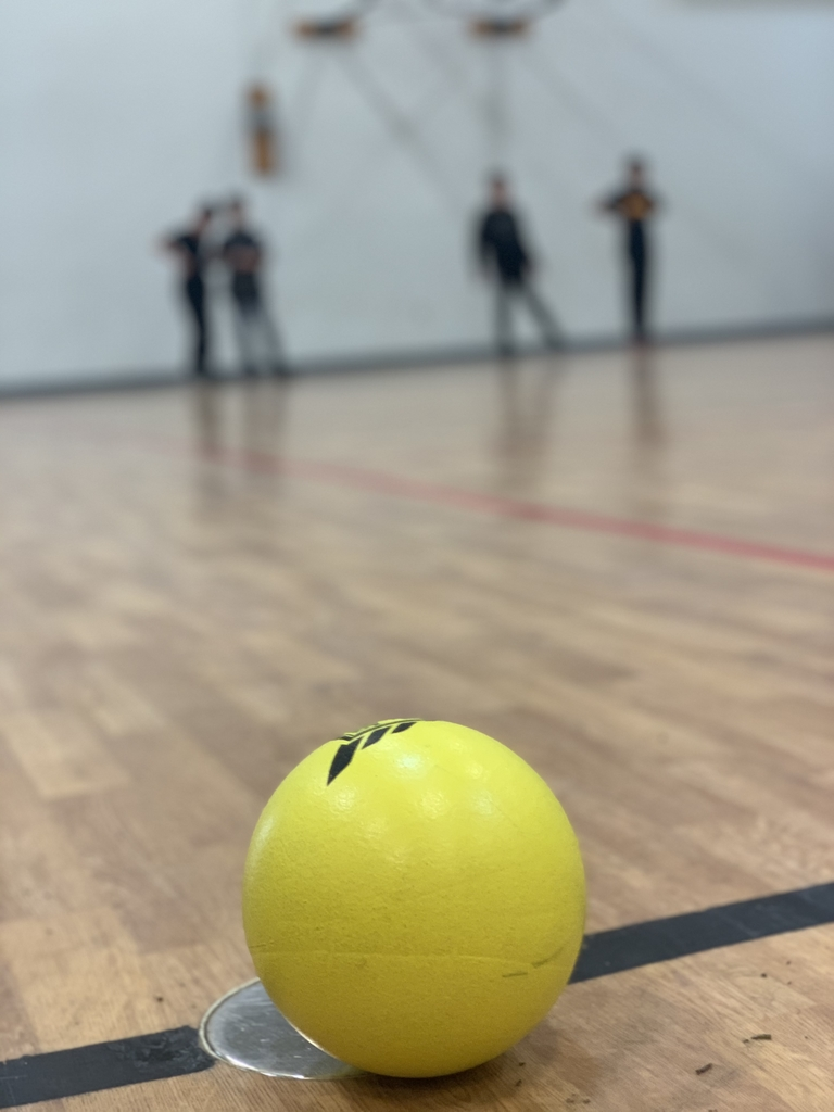 Dodgeball closeup